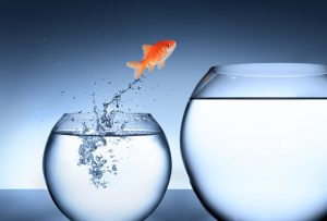 The 3 most critical things to do when your business has a change in accountant or bookkeeper